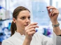 Ausschreibung: Berta-Ottenstein-Programm für Clinician Scientists