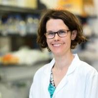 Neu an der Medizinischen Fakultät: Prof. Dr. Claudine Kraft
