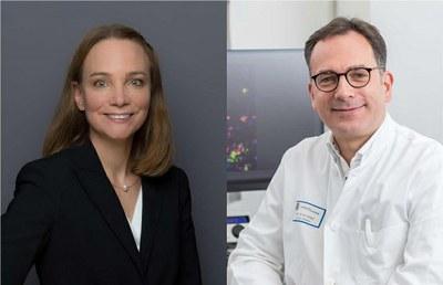 DFG fördert exzellente Forschungsvorhaben an der Medizinischen Fakultät