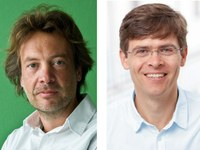 DFG fördert zwei Sonderforschungsbereiche in der Medizin